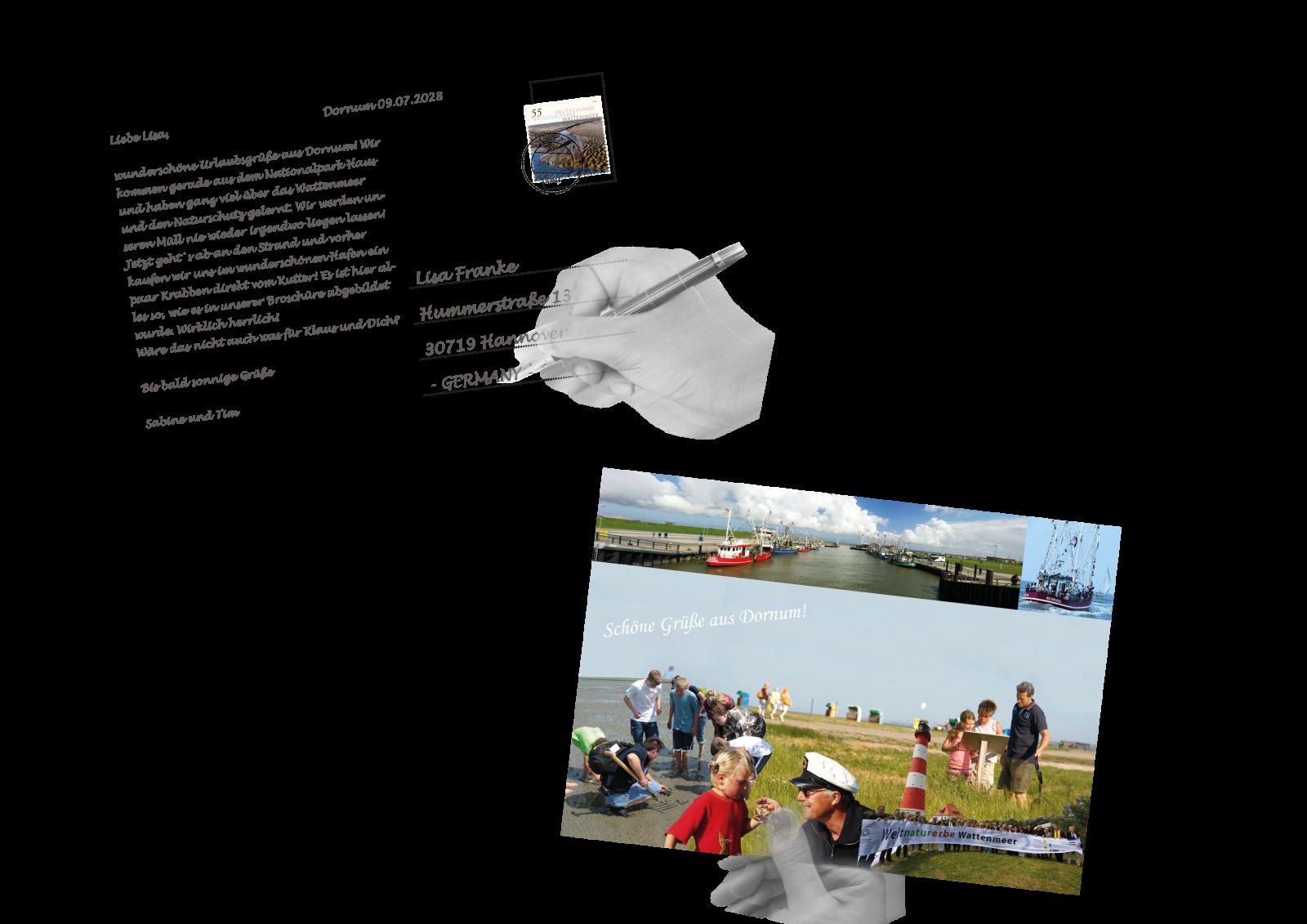Beispielseite Publikation zum Thema Fischerei in Dornum
